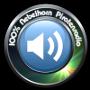 Nebelhorn Radio